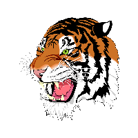Tiger Png Image Download Tigers PNG Image - Tiger PNG