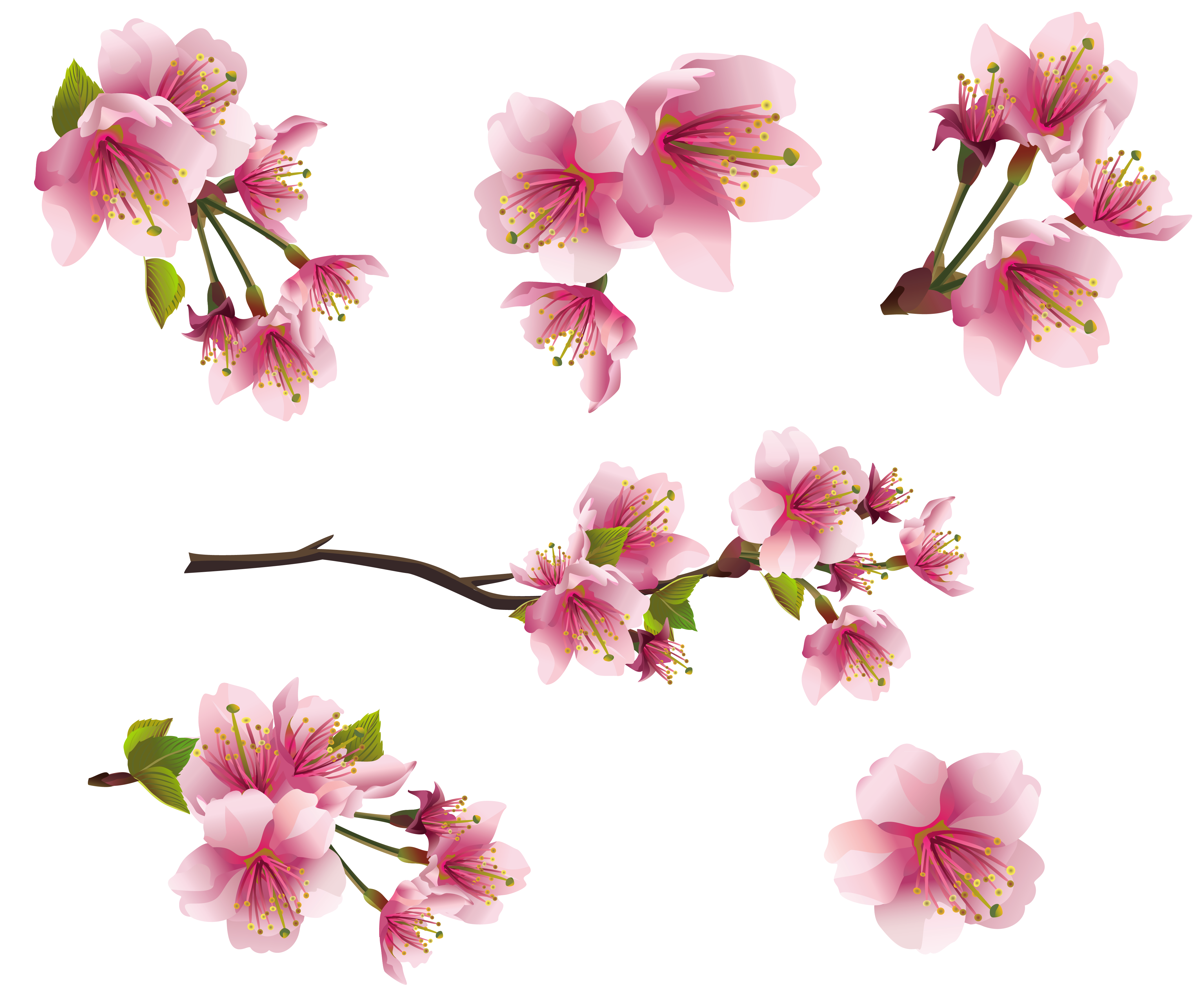 Tiny Flowers PNG - 60132