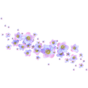 Tiny Flowers PNG - 60137