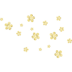 Tiny Flowers PNG