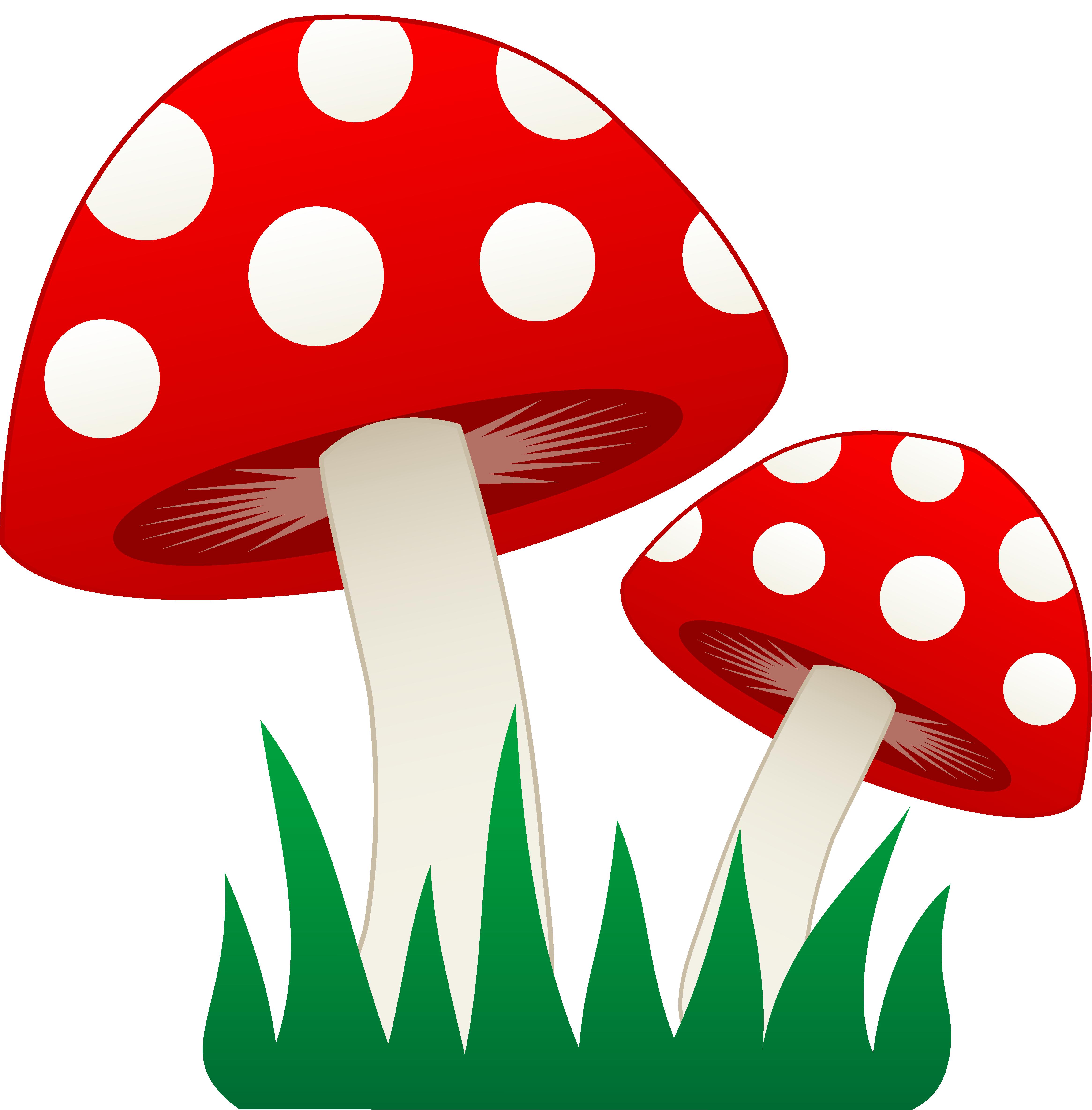 Magical clipart mushroom #4 - Toadstool PNG HD