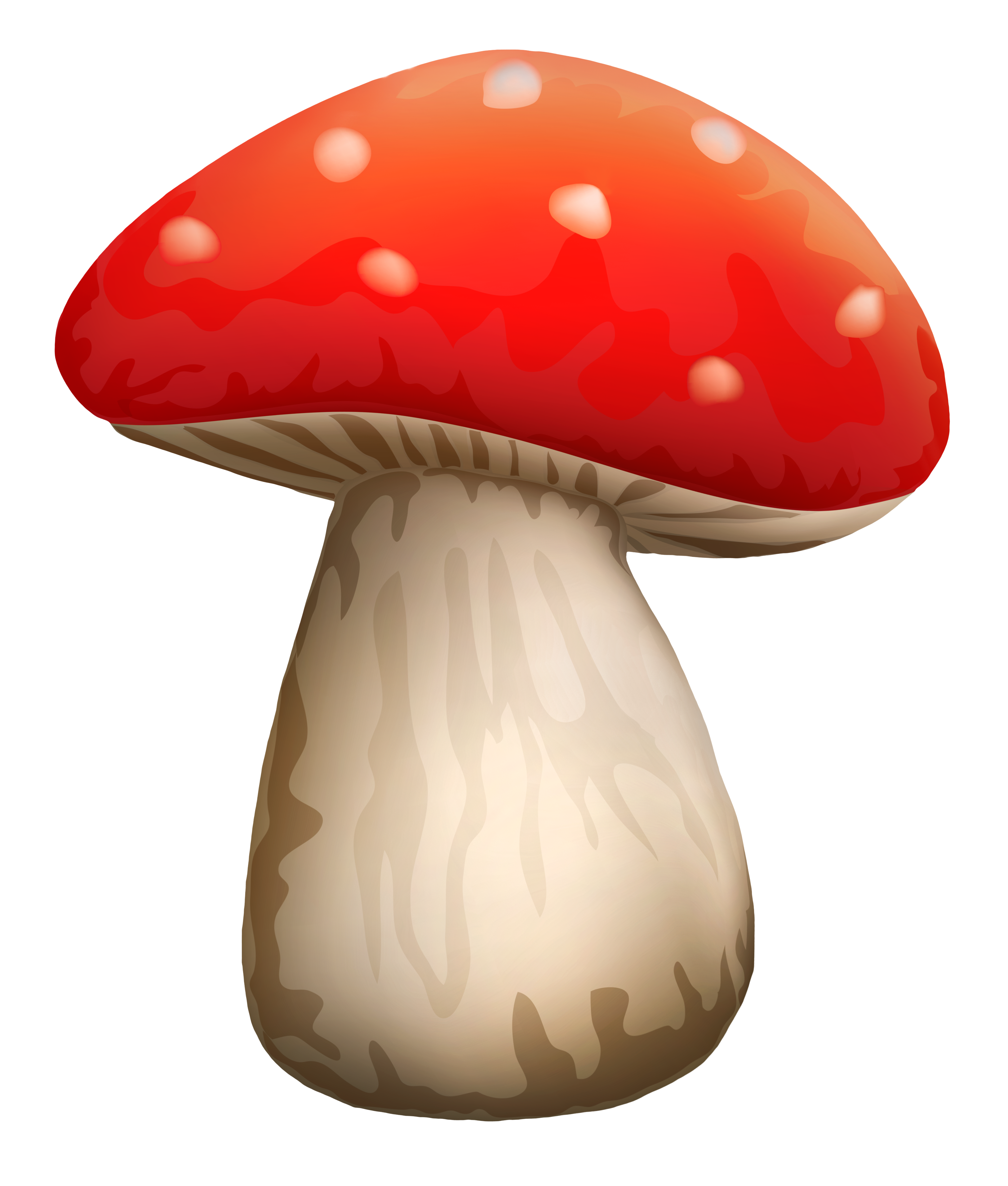Mushroom clipart white dot #1 - Toadstool PNG HD