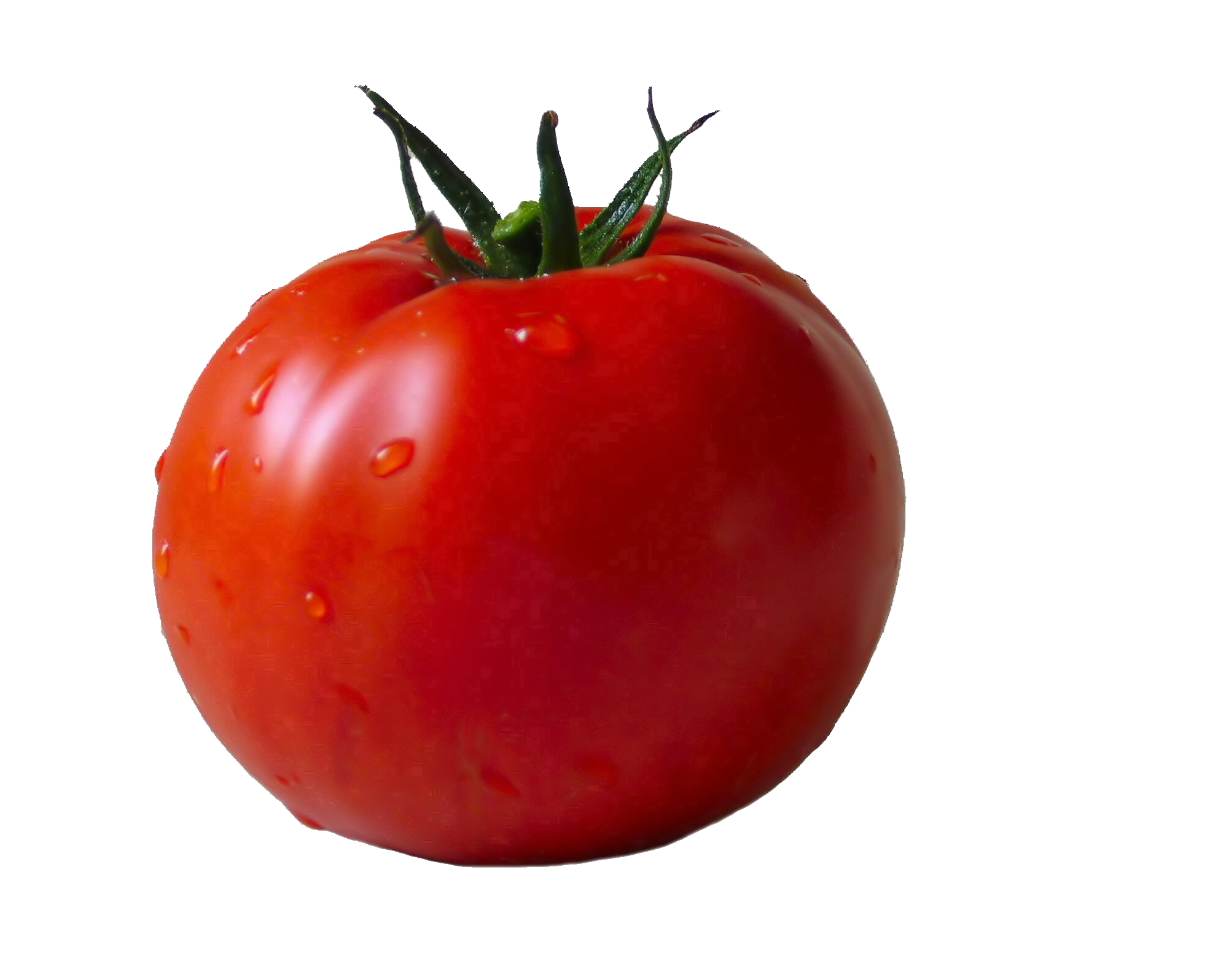 Tomato PNG - 4799