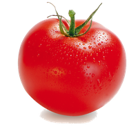 Tomato PNG - 4809