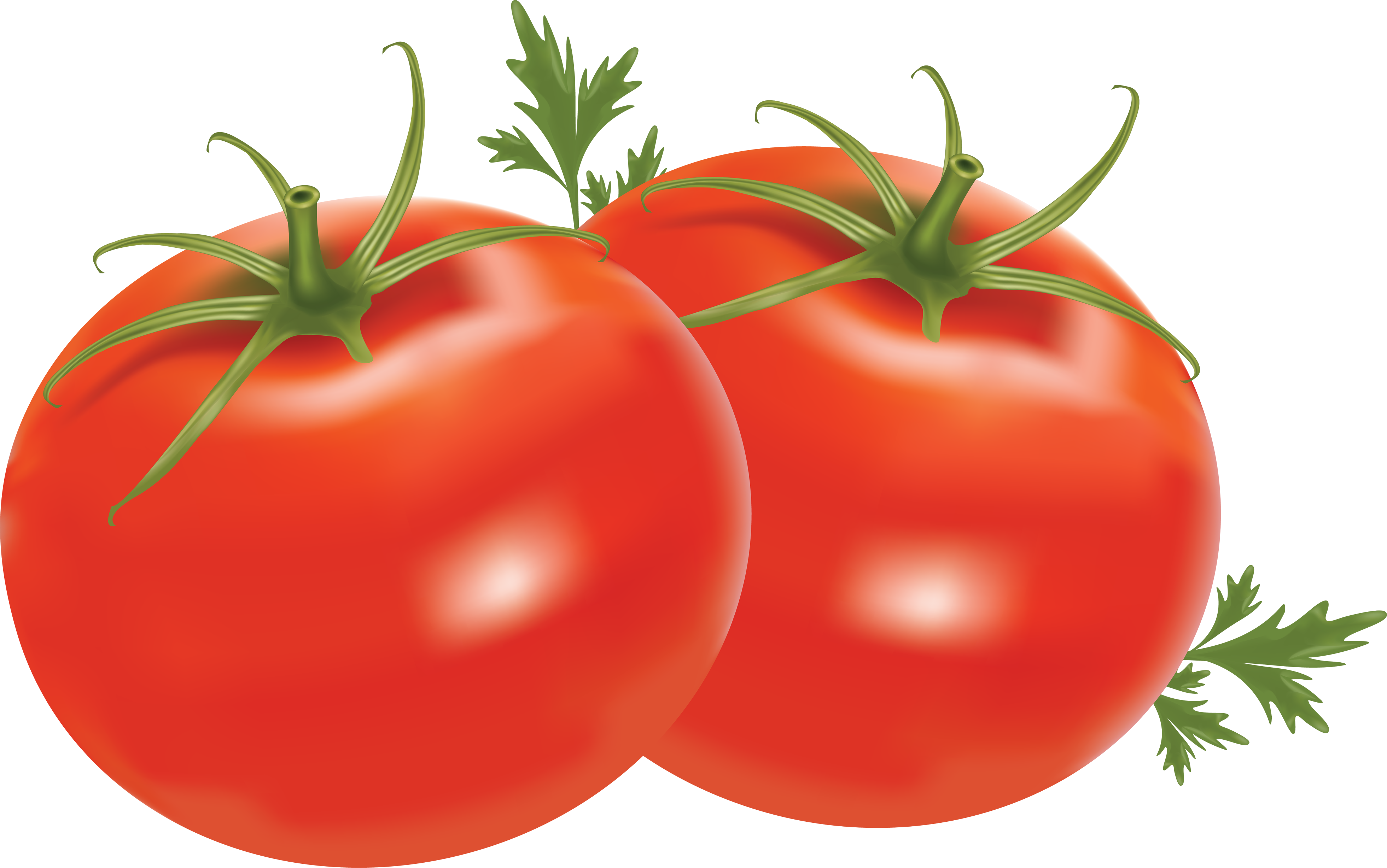 Clipart Info - Tomato HD PNG