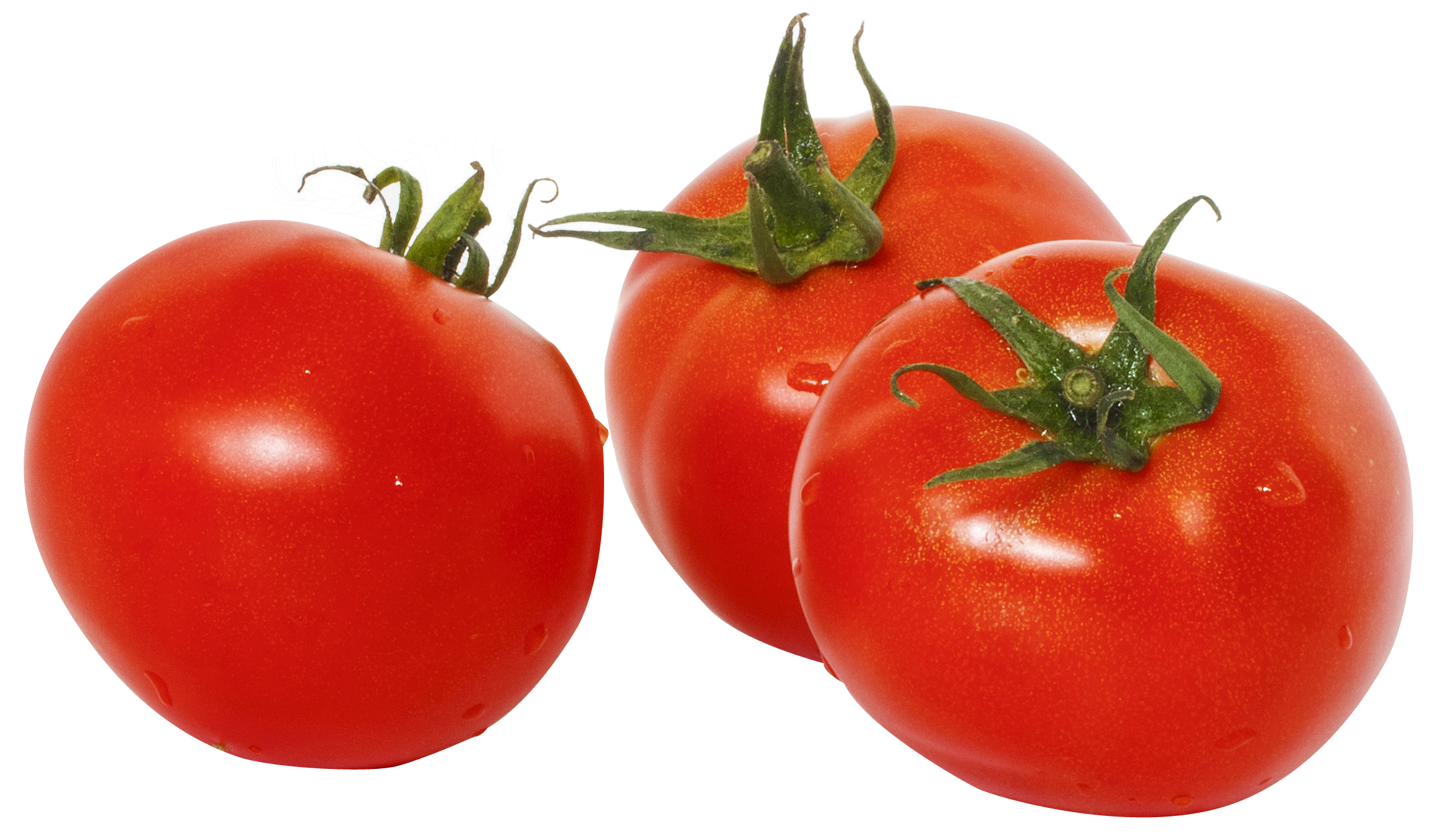 PNG Tomato-PlusPNG pluspng.com-2319 - PNG Tomato - Tomato PNG HD