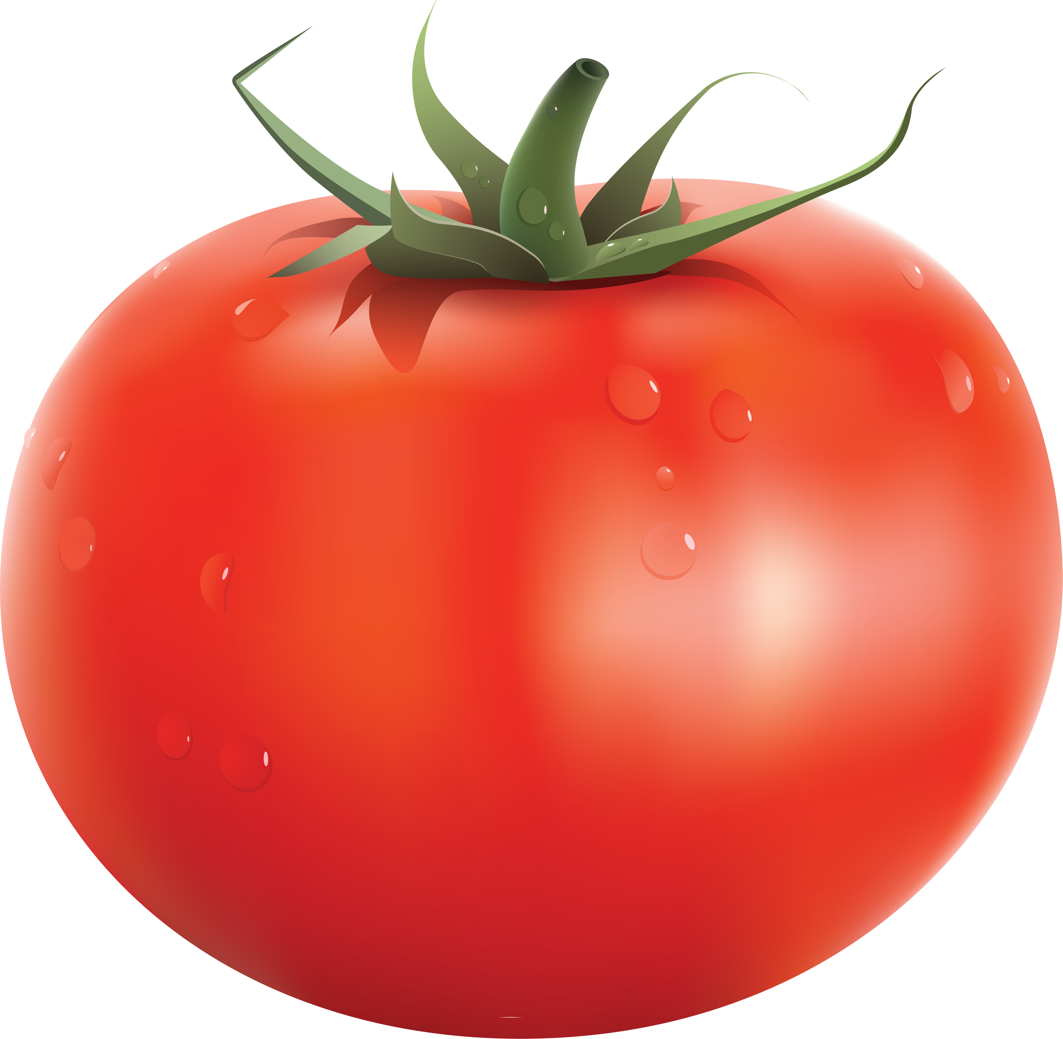 Tomato PNG - PNG Tomato