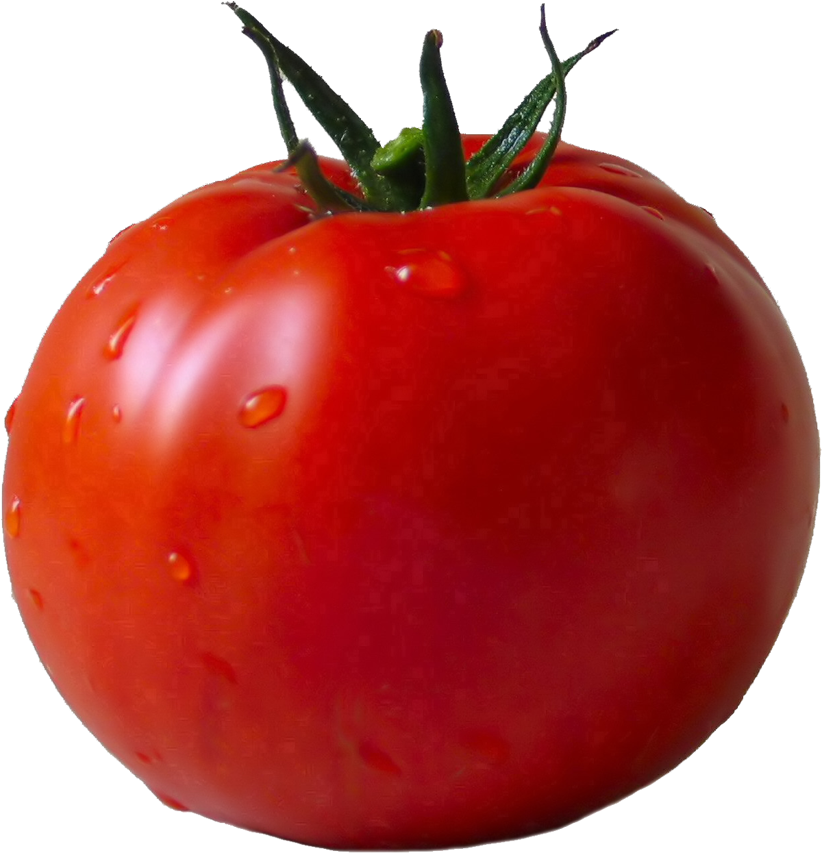 Tomato PNG - 4813