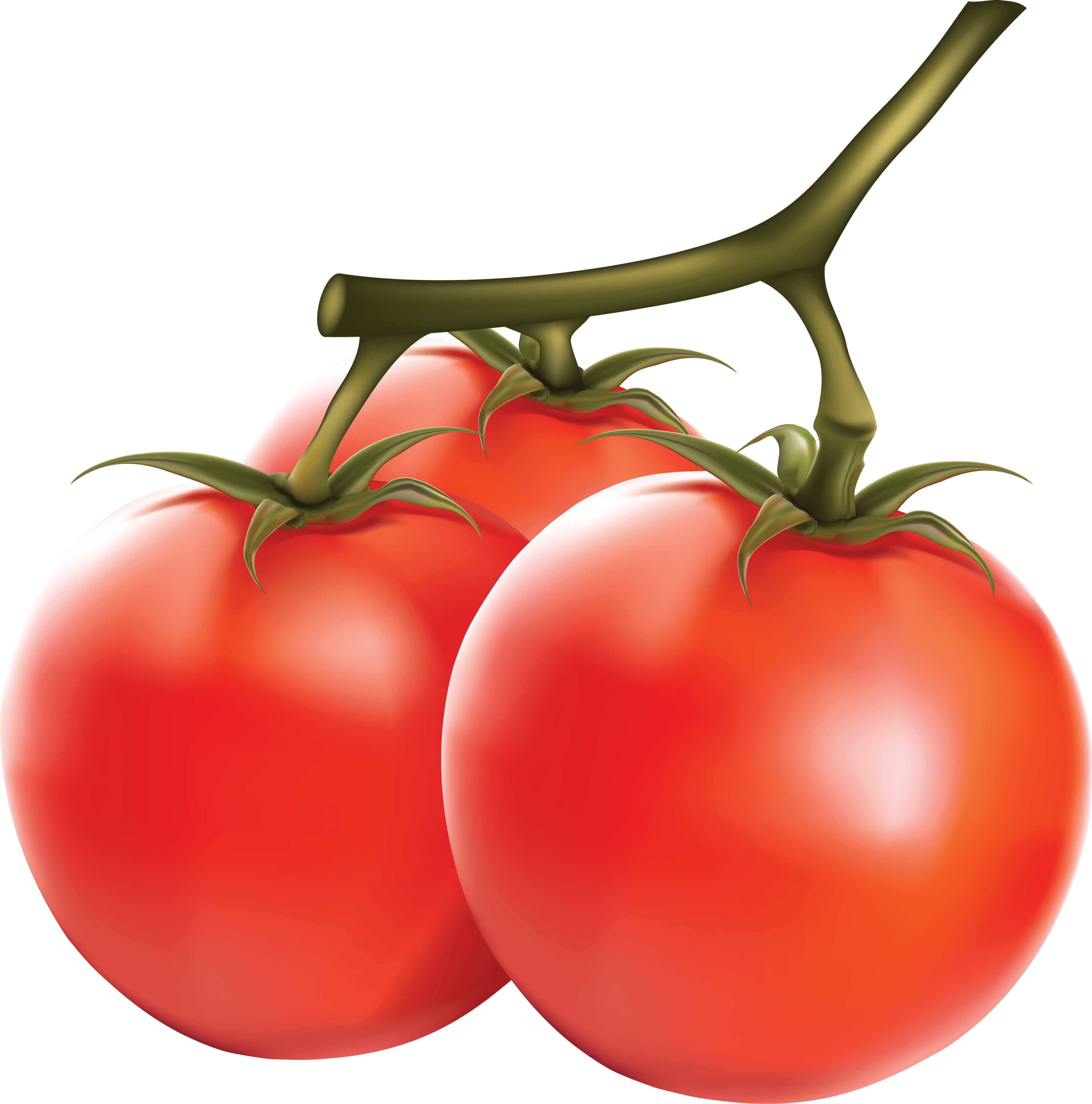 Tomato PNG - 4797