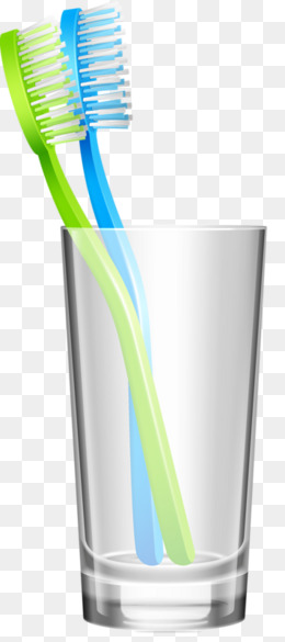Toothbrush Cup, Toothbrush, Personal Hygiene, Bathroom PNG Image - Toothbrush HD PNG