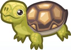 Tortoise PNG - 7211