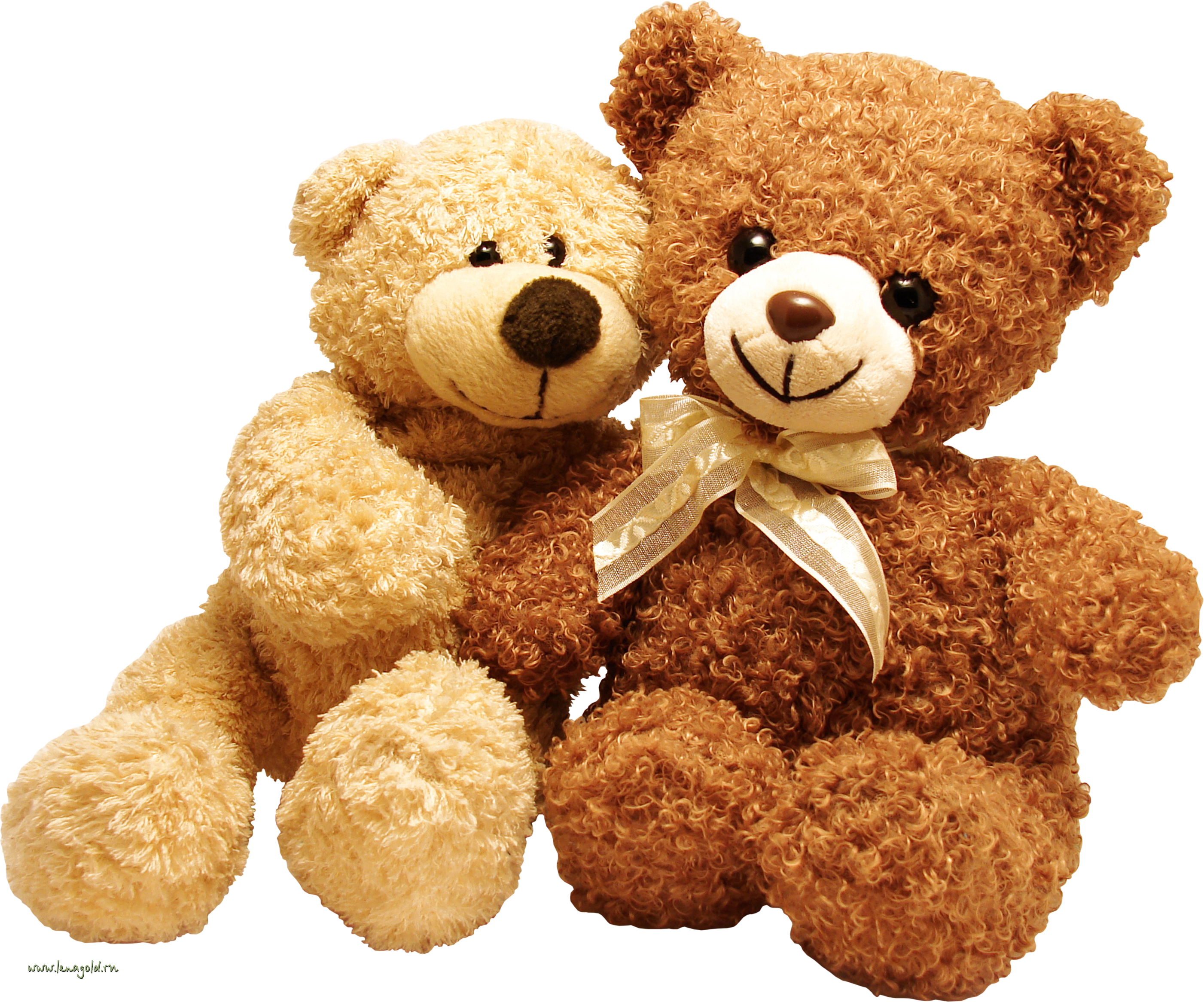 Toy Bear PNG
