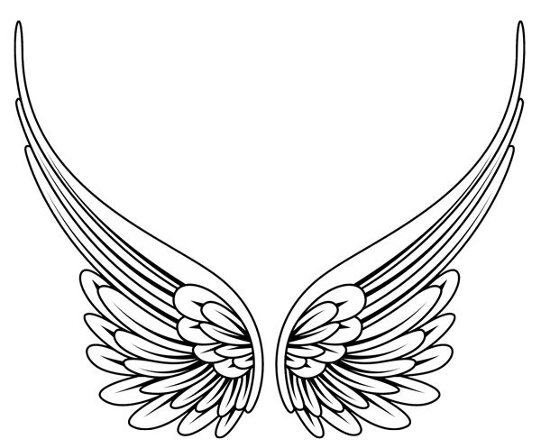 Traceable Butterfly Wings | Tribal Angel Wings- High Quality Photos and  Flash Designs of . - Wings Tattoos PNG