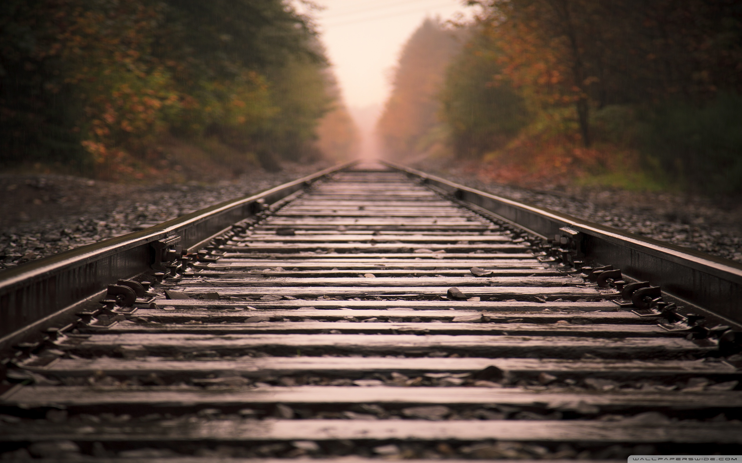 Wide PlusPng.com  - Train Track PNG HD