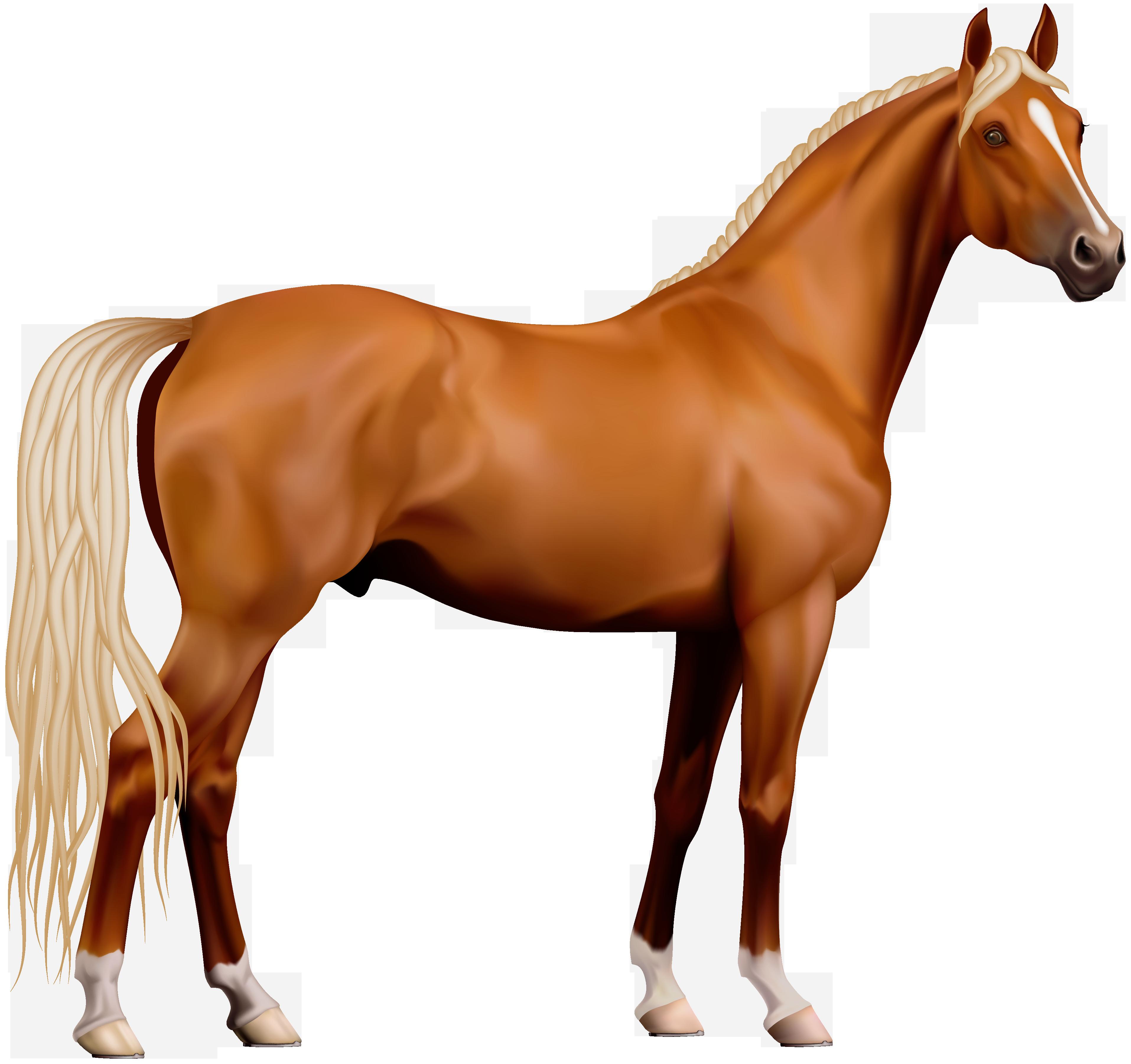 Transparent Horse PNG Clipart - Horse PNG
