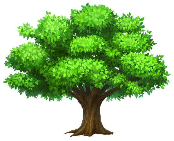Tree and Grass PNG Clipart Im