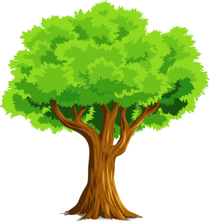 Clip Art Trees Tree Clipart Clip Art Library Clip Art Library Classroom  Clipartclipart Download Wallpaper - Tree Clipart PNG
