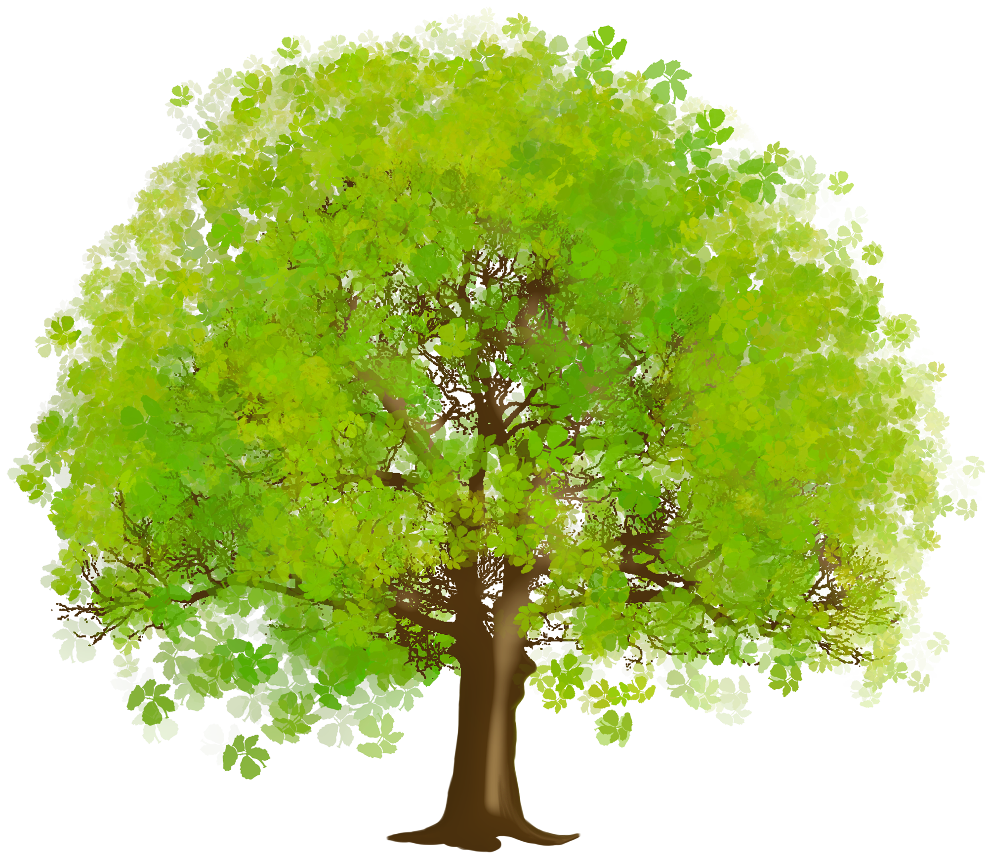 Large Green Tree PNG Clipart - Tree Clipart PNG