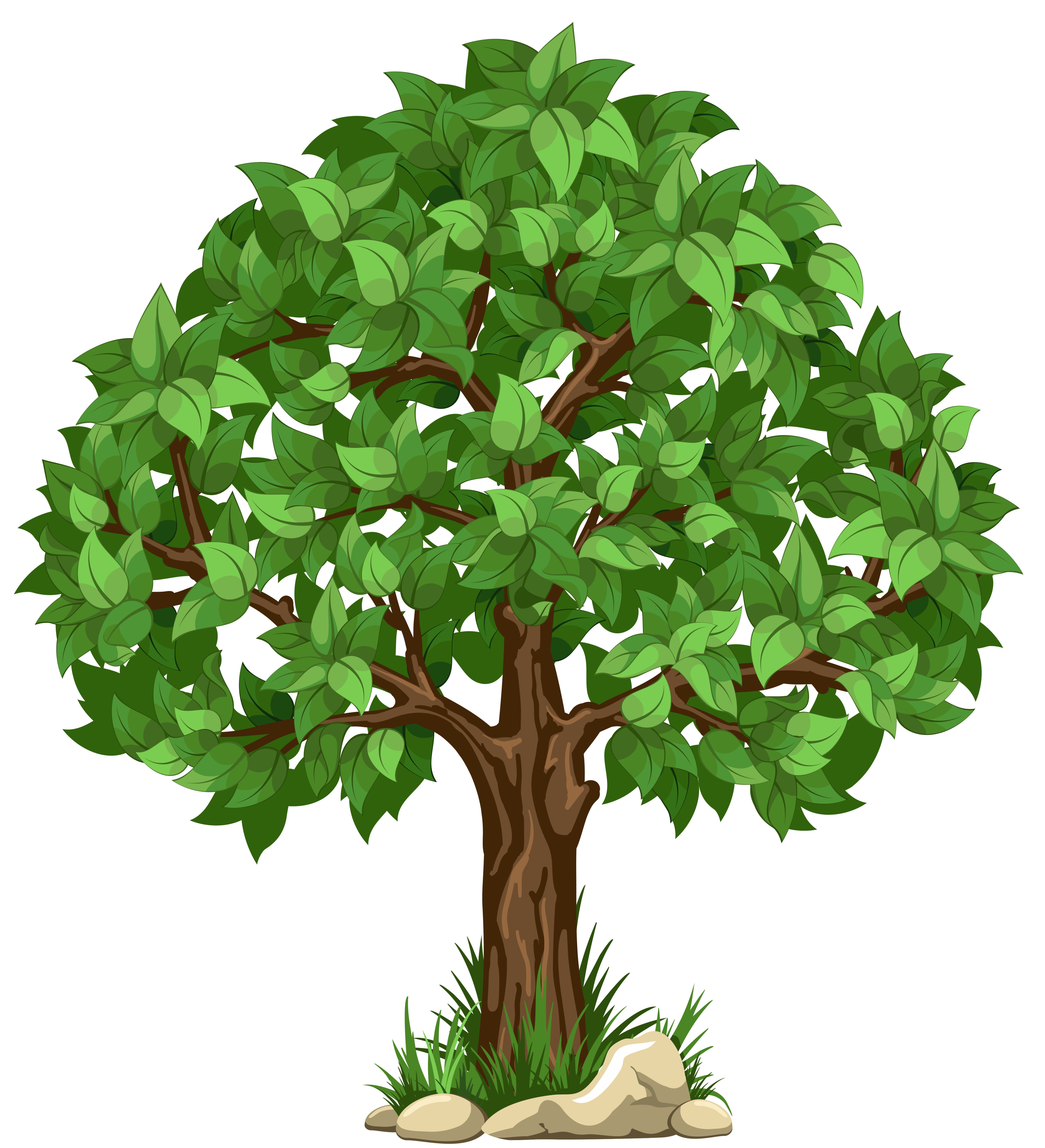 Transparent Tree PNG Clipart Picture. - Tree Clipart PNG