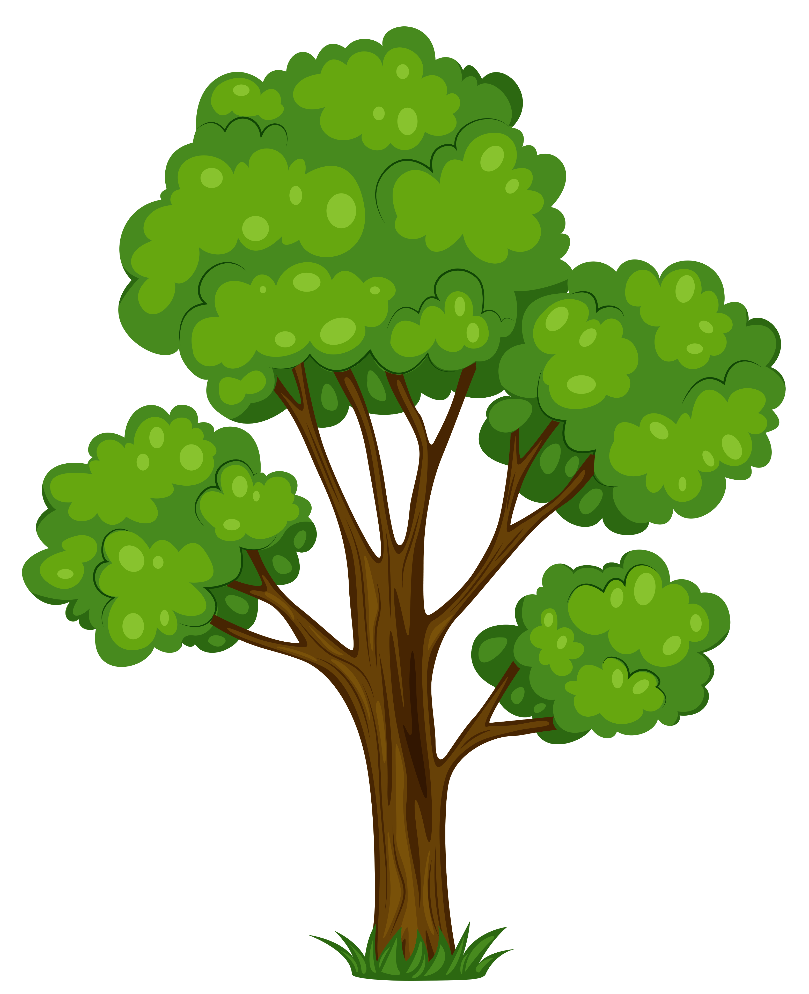 Tree Clip Art 7 - Tree Clipart PNG