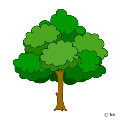 Tree Clipart PNG - 77193
