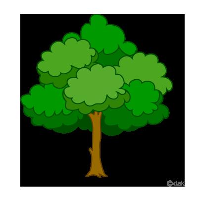 Tree Clipart Png ClipArt Best - Tree Clipart PNG