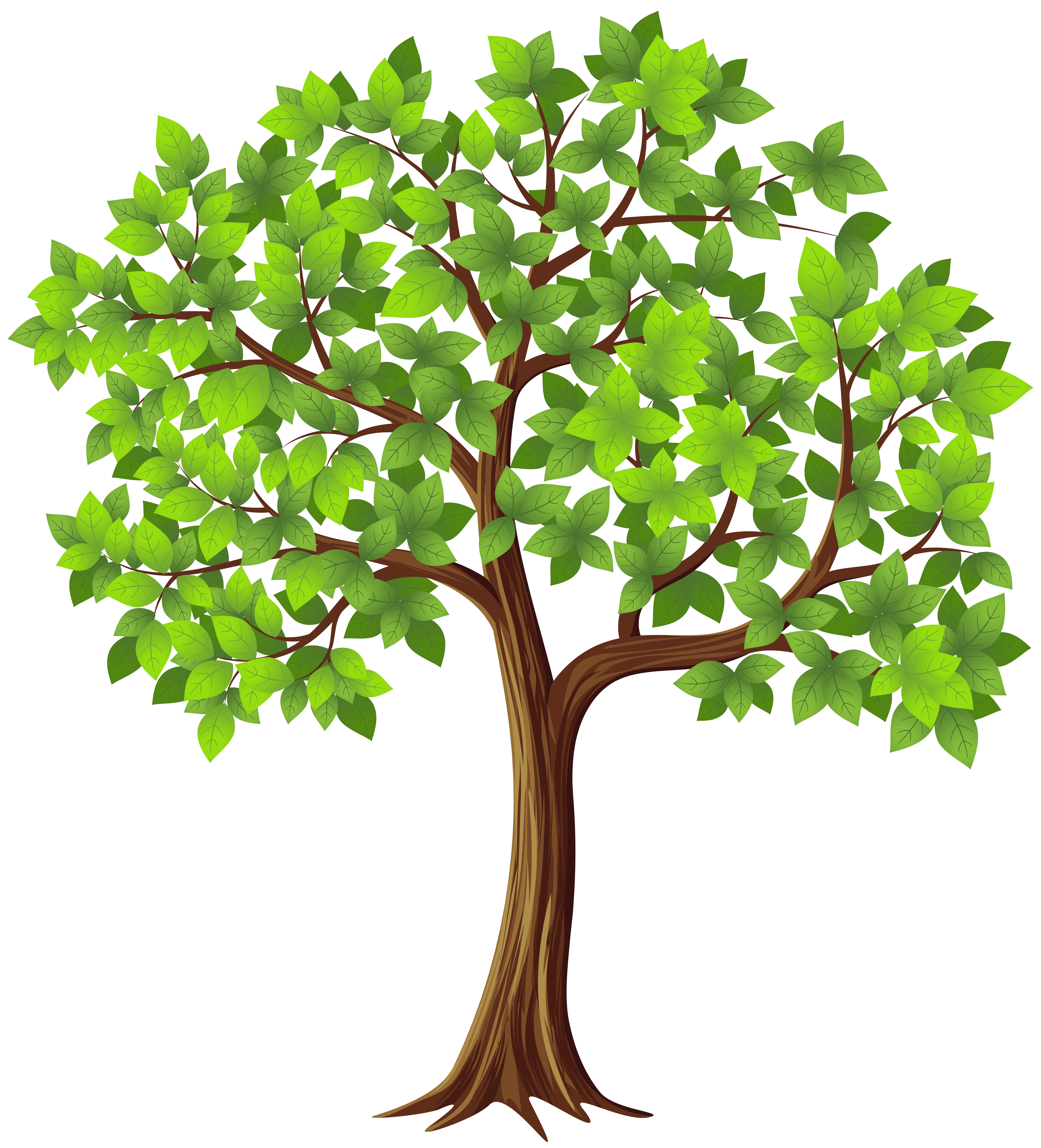 Tree Clipart PNG - 77194
