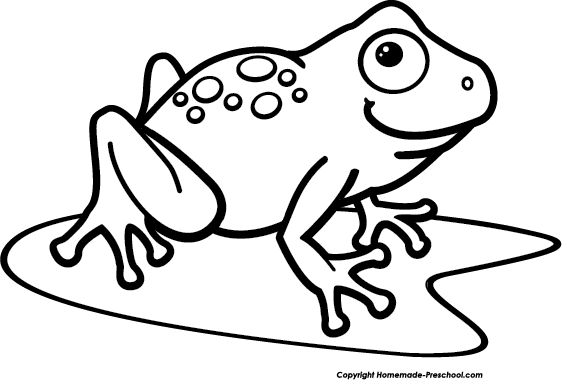 Tree Frog PNG Black And White