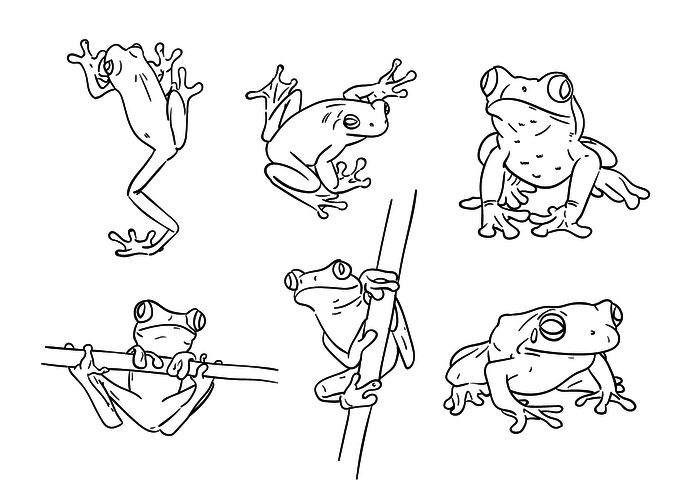 Scribble Green Tree Frog Vectors - Tree Frog PNG Black And White
