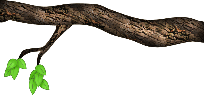 TreeBranch-1.png Photo By WinterBerry2 | Photobucket - Tree Limb PNG