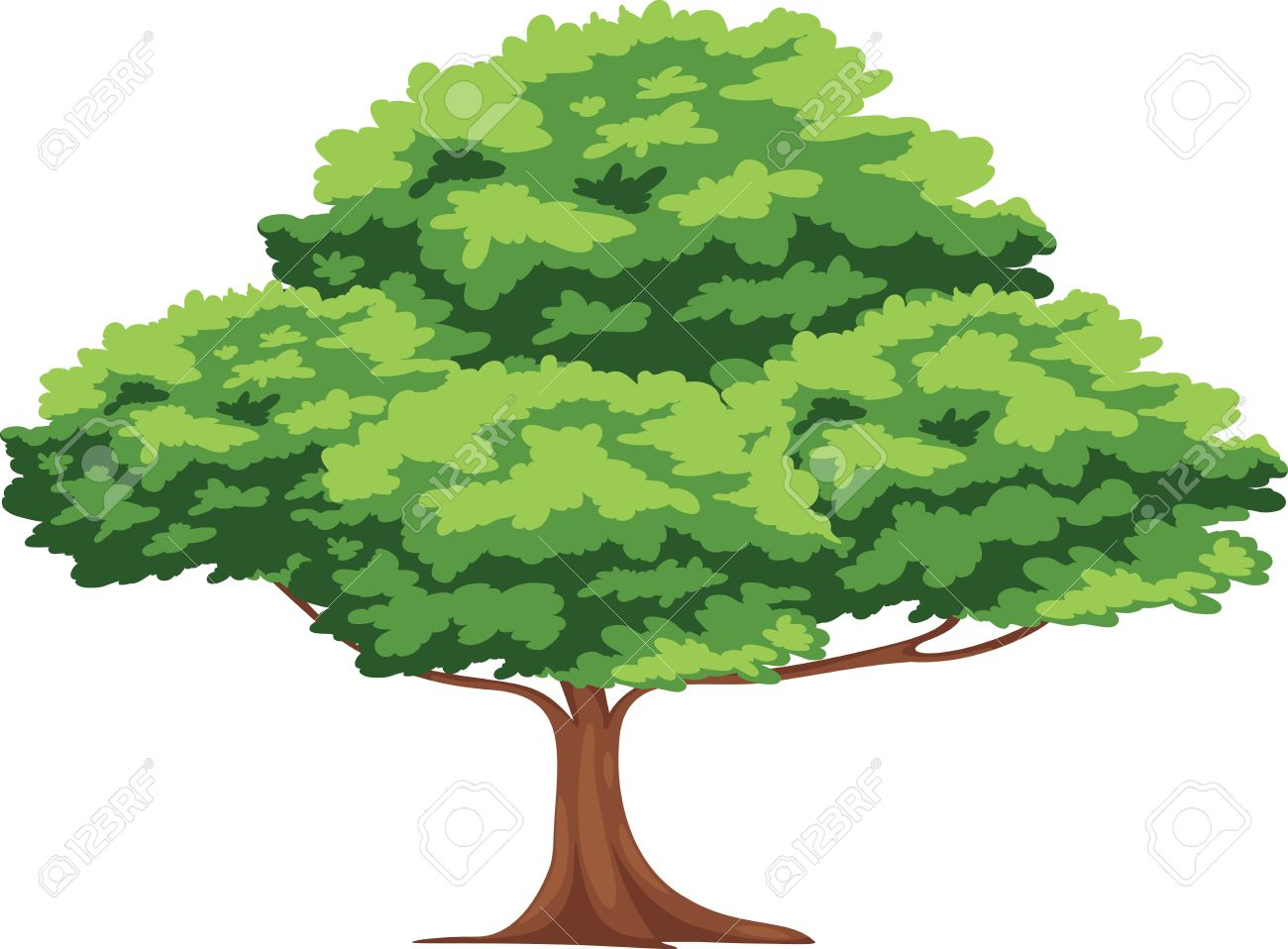 Tree Royalty Free Vector PlusPng.com  - Tree PNG Vector
