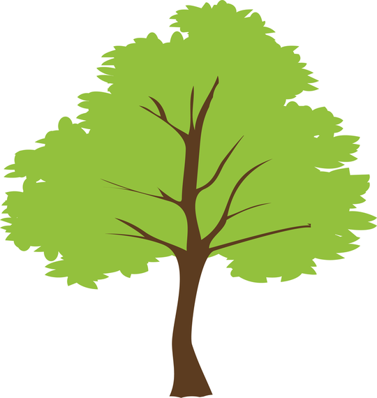 Tree Vector - Tree PNG Vector