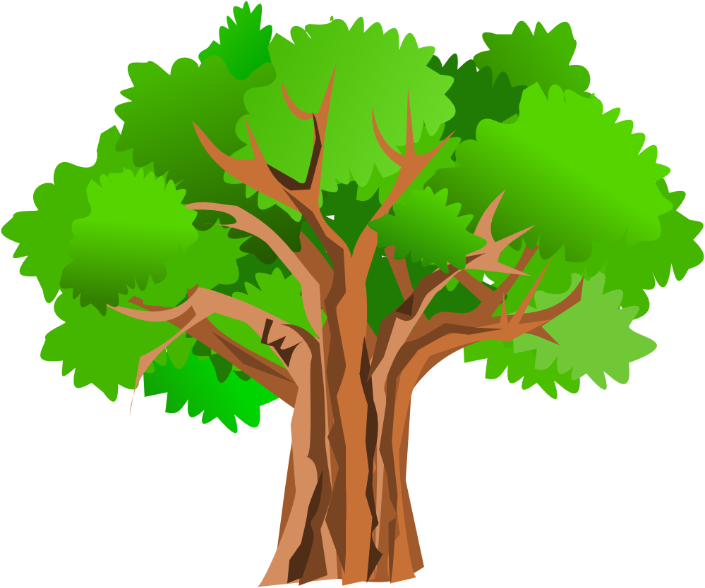 Tree PNG Vector - 56469