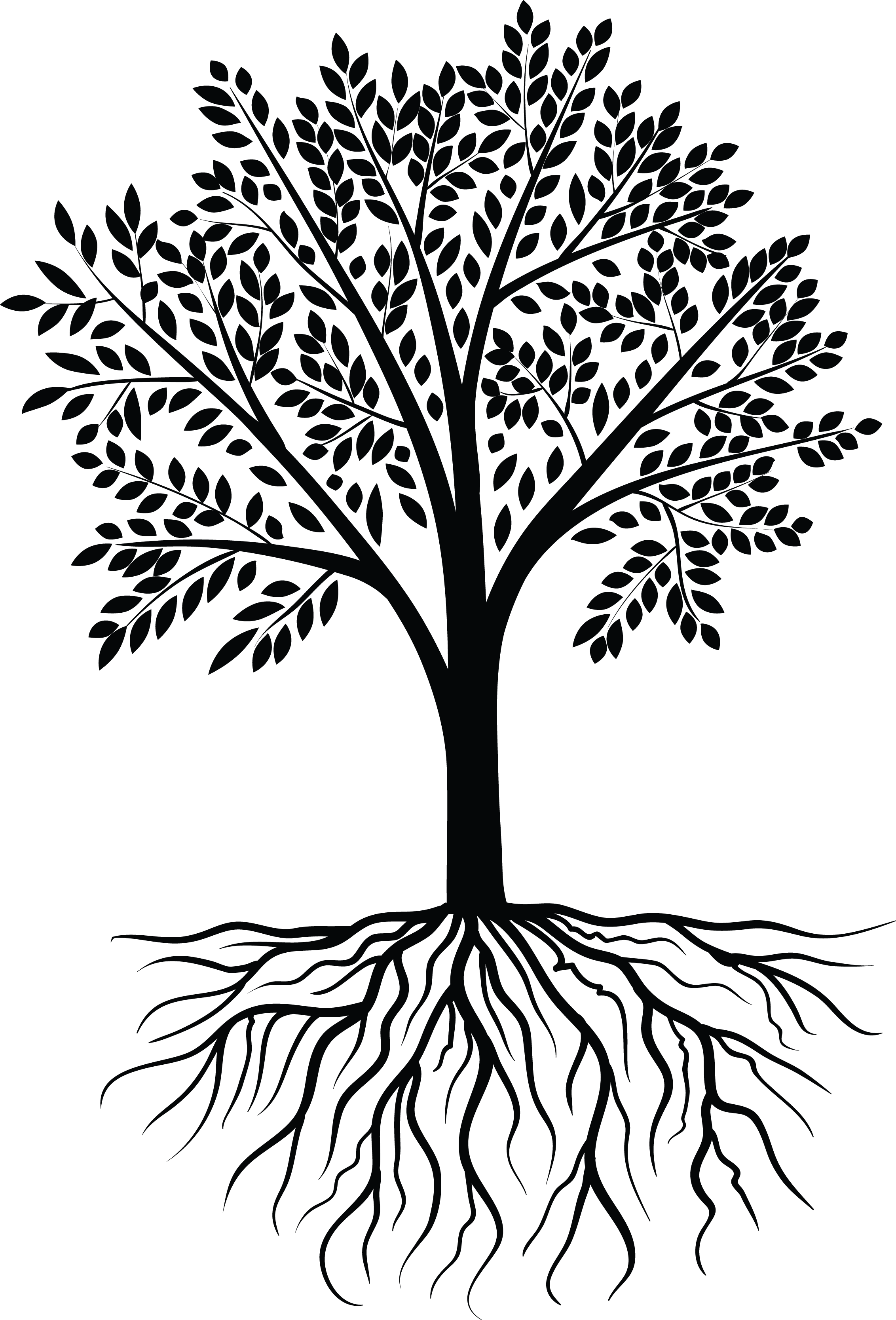Tree Vector Black White - Tree PNG Vector