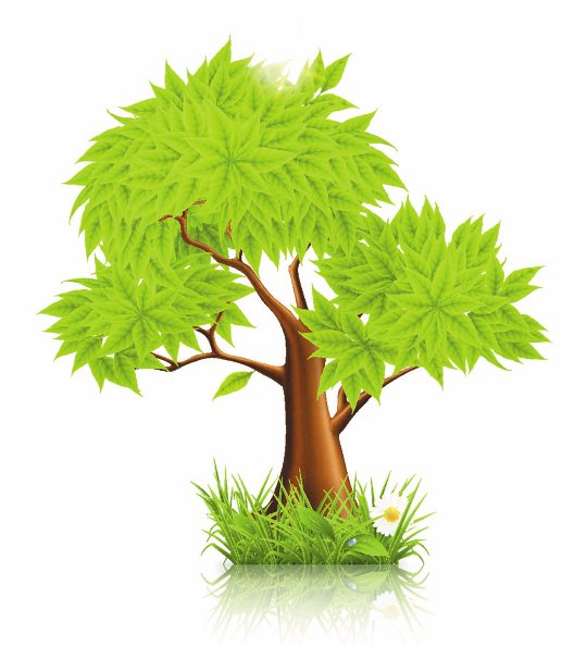 Tree PNG Vector - 56482