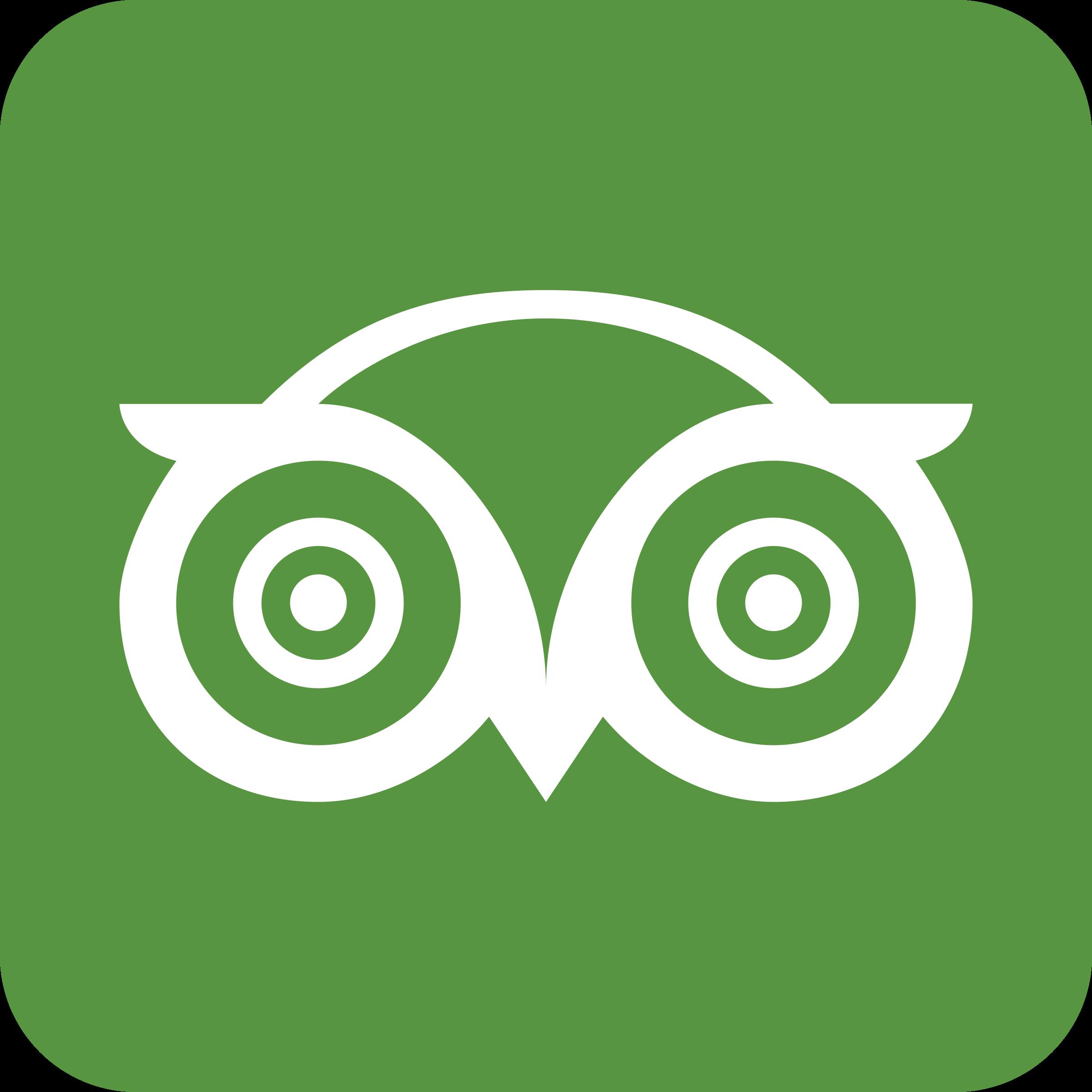 Tripadvisor Logo Png Transpar