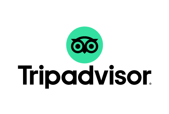 Transparent Tripadvisor Icon