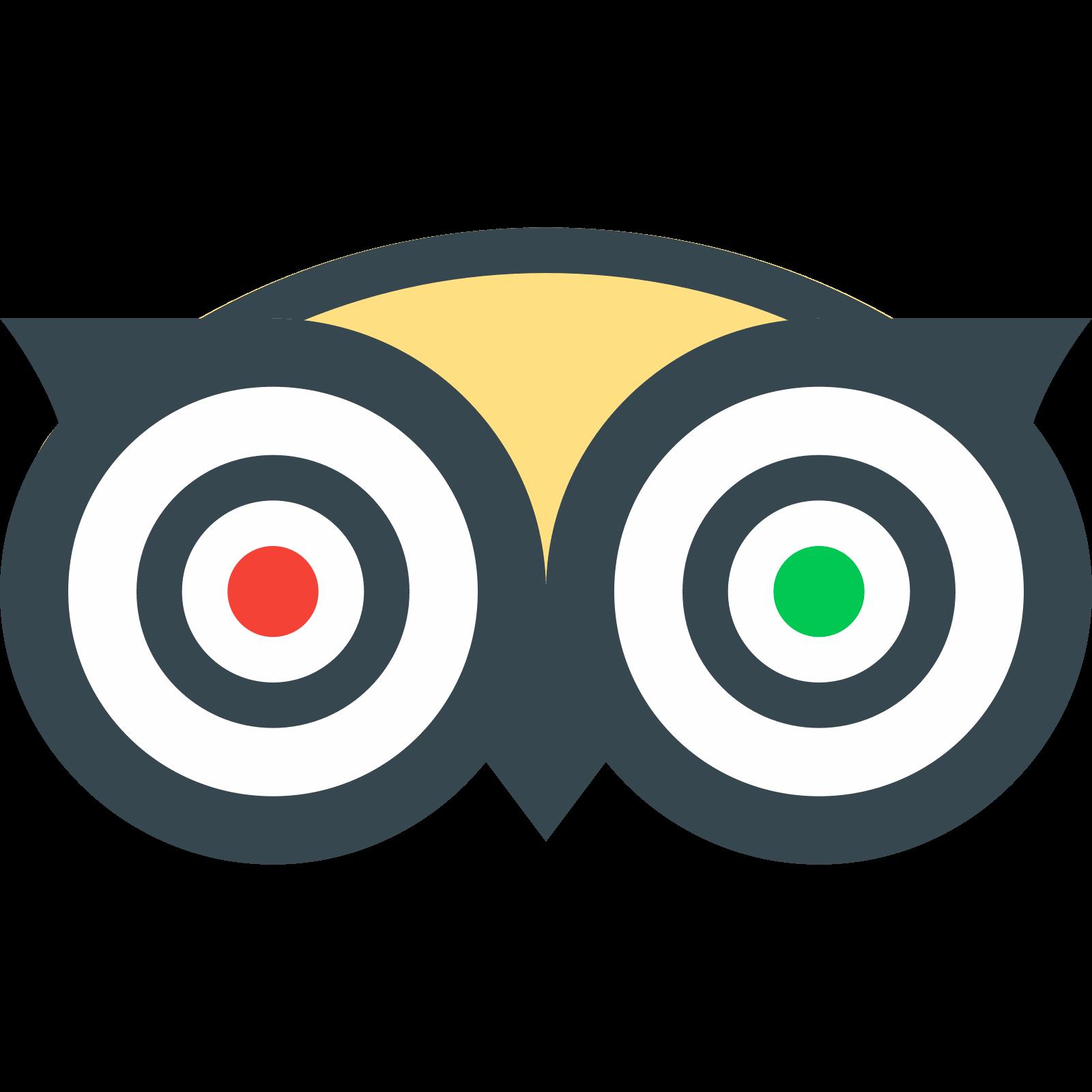 TripAdvisor icon. PNG 50 px - Tripadvisor PNG