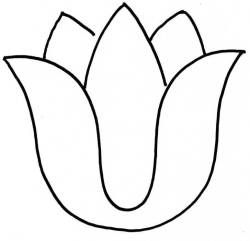 Tulip PNG Outline - 81457