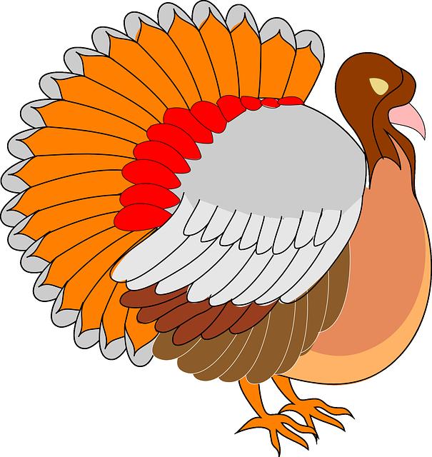 Turkey Bird PNG - 26854