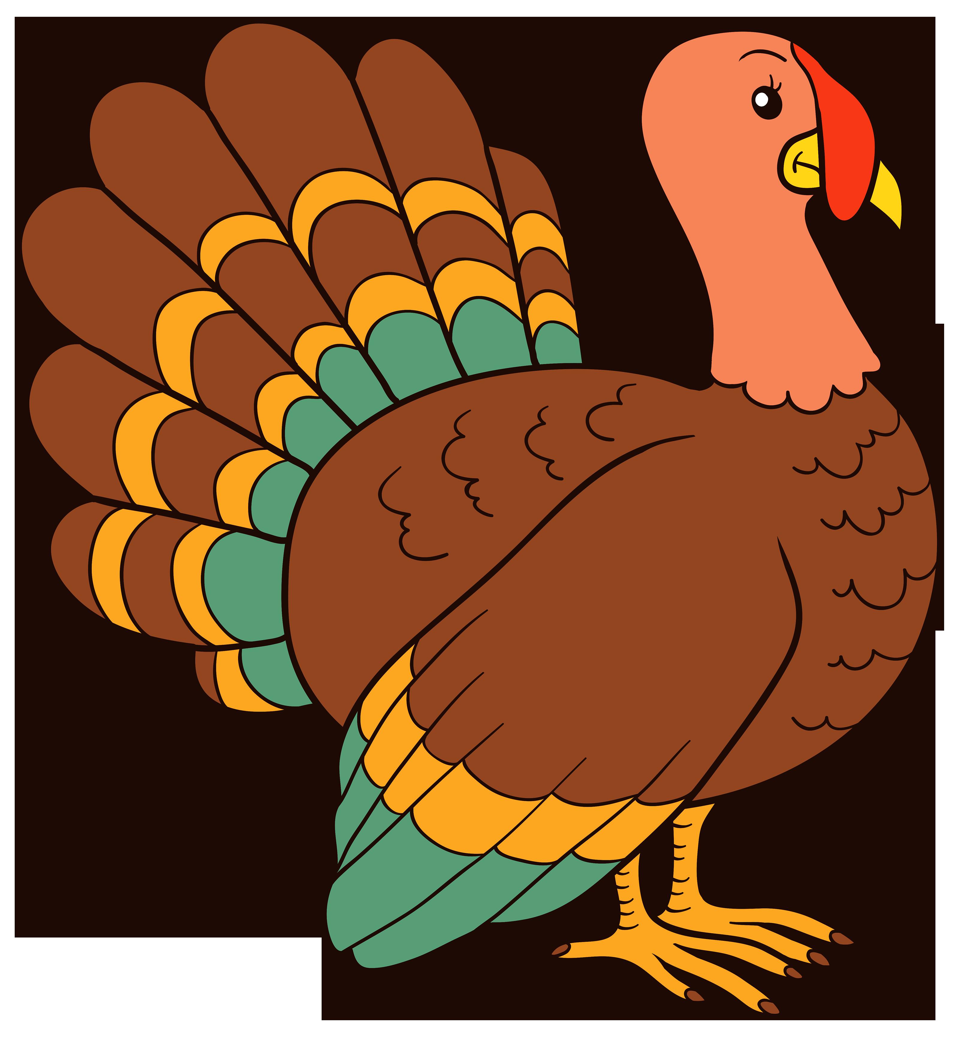 Turkey Bird PNG - 26857
