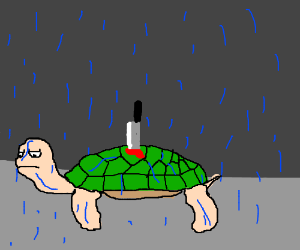 Turtle in rain with a knife on its back - Turtle On Its Back PNG