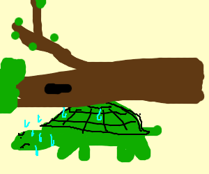 Turtle struggles to carry the tree on its back - Turtle On Its Back PNG