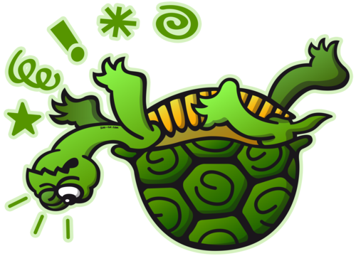 upside down turtle png trans back - Turtle On Its Back PNG