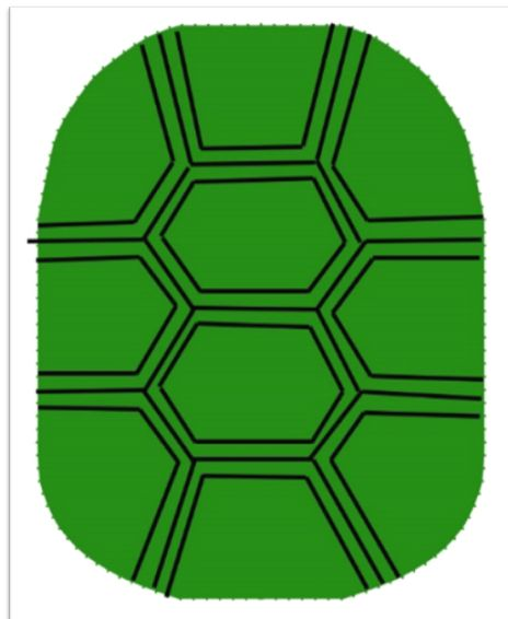 Picture of Batting - Turtle Shell PNG HD