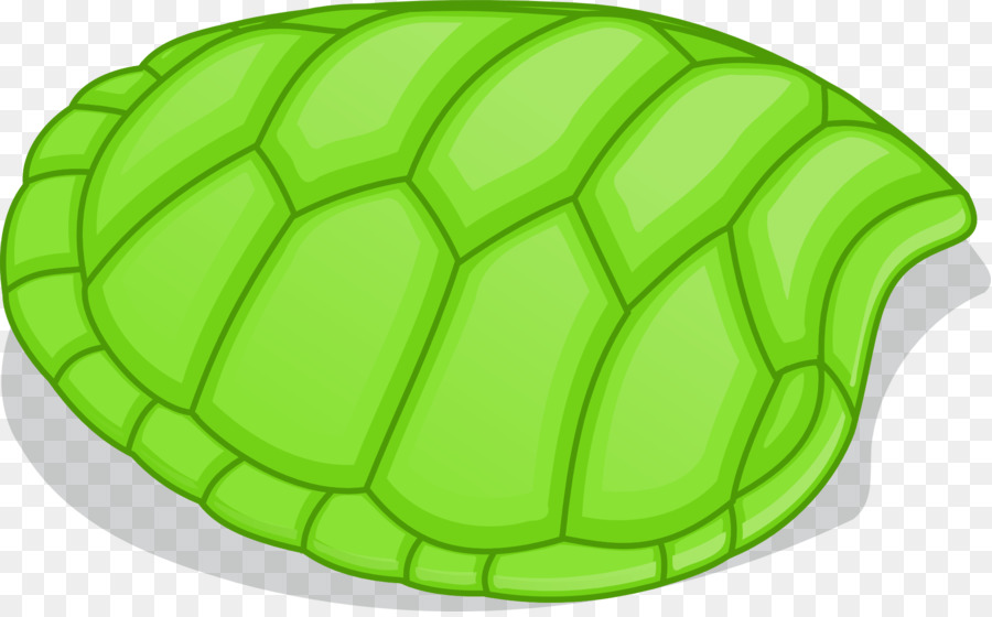 Turtle shell Clip art - tortoide - Turtle Shell PNG HD