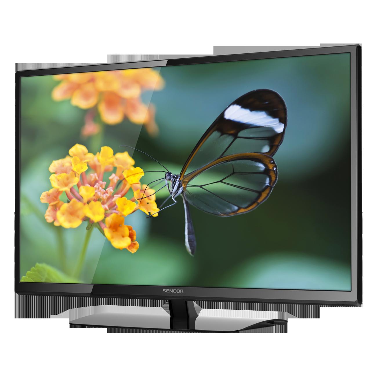 Tv HD PNG - 92755