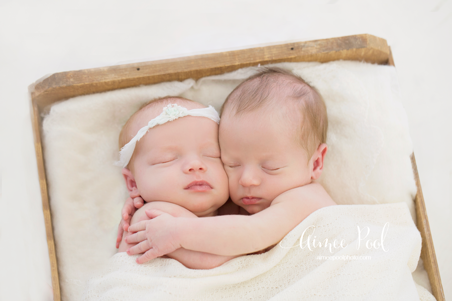 Newborn twin photos session aimee pool photography pluspng com twin baby png hd