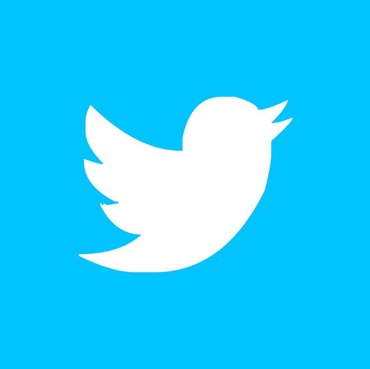 Twitter PNG-PlusPNG.com-723 - Twitter PNG
