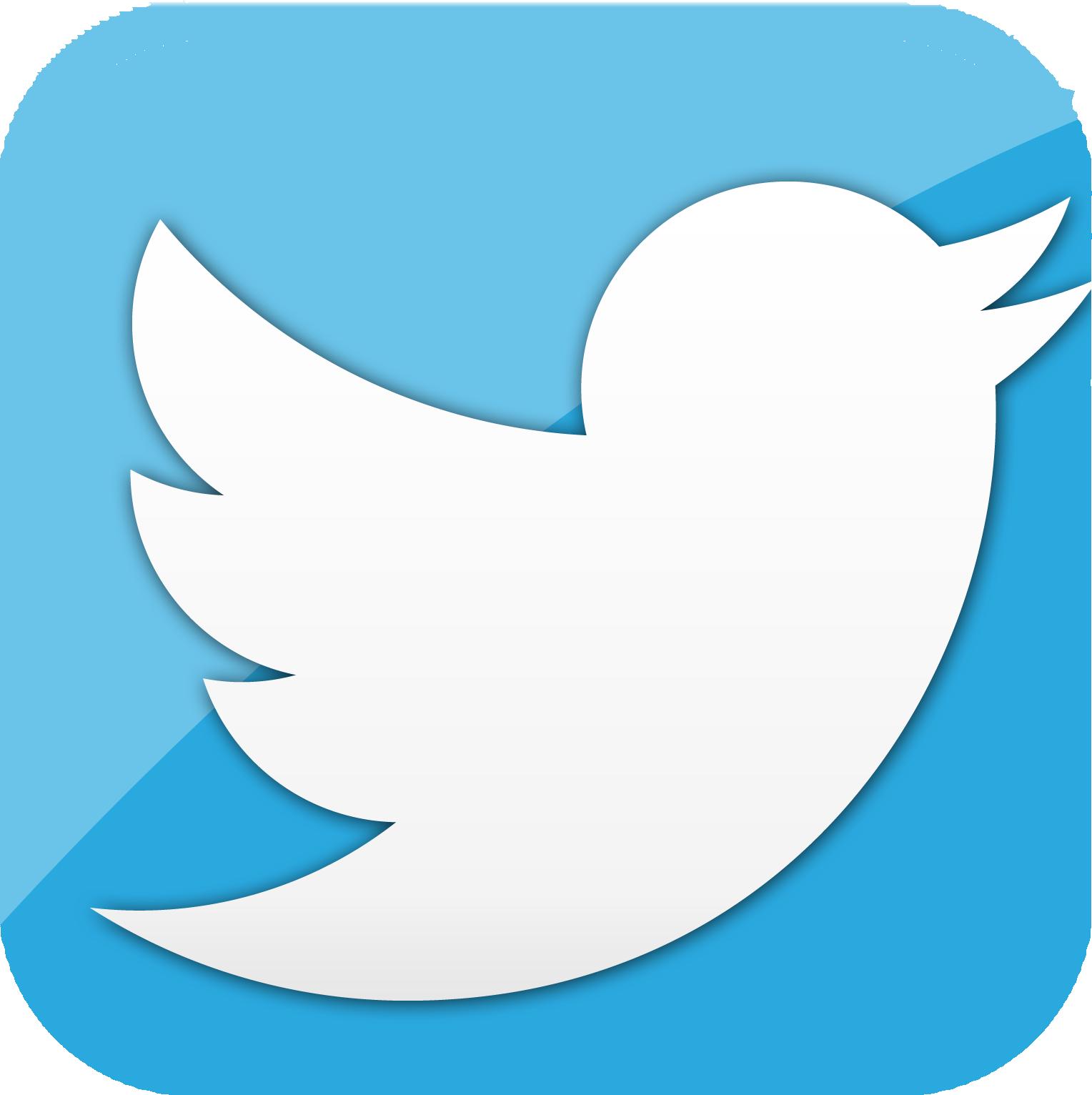 TwitterBird - Twitter PNG Logo